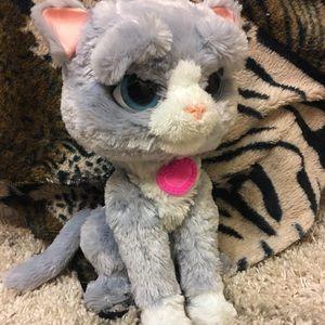 Interactive Kitty Toy